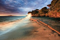Murrays Bay, North Shore, Auckland, NZ