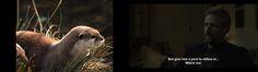 Strange coincidence! Model-useful youtube screenshot and random scene from House of Cards.