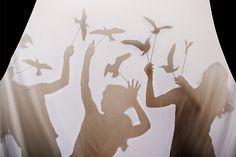 """""""The Birds"""" Shadow Puppets DIY 