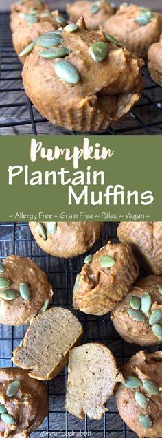 Pumpkin Plantain Muffins (Paleo, Vegan, Allergy Free)