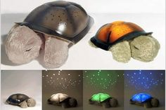 Twilight Turtle Night Light ( Both my boys would luv this!! I'm getting them green & blue their favorite colors =D )