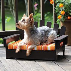 """ADIRONDACK PET LOUNGER  Product # 59906 - Wooden pet-sized version of everyone's favourite chair. Lounger has a fabric covered cushion and is low to the ground for easy pet access. Assembly hardware included. For indoor/outdoor use. (22""""L x 13""""W x 12-1/2""""H) $39.95"""