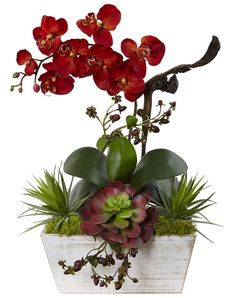 Autumn Orchid & Succulent Silk Flowers with Planter | 21 inches
