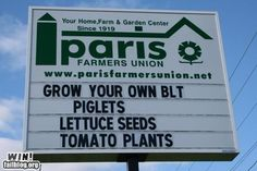 Grown your own BLT