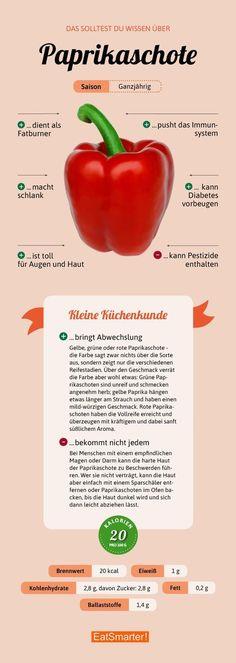 Das sollte man über Paprika wissen | eatsmarter.de #paprika #infografik #ernährung