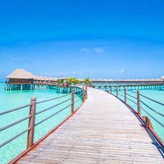 Sun Aqua Vilu Reef Maldives  @vilureefmaldives by fareconnect