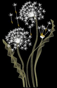 Dandelions free embroidery design - Flowers free machine embroidery designs - Machine embroidery forum