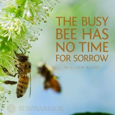 """LOVE THIS: """"The busy bee has no time for sorrow."""" - William Blake"""