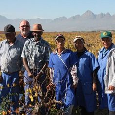 Tesco and wine importer Enotria have launched a campaign to produce the world's first socially created wine, which will help the Enaleni Community in South Africa to build a sustainable future