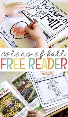 Color Activities, Autumn Activities, Kindergarten Activities, Preschool Activities, Speech Activities, Emergent Readers, Emergent Literacy, Fallen Book, Fall Preschool