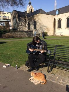 It's a beautiful day in the neighbourhood... - from FB Page James Bowen & Street Cat Bob