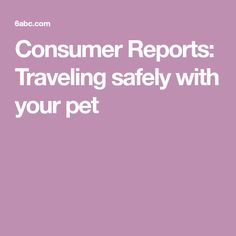 Consumer Reports: Traveling safely with your pet