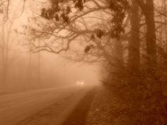 Foggy road in Michigan.