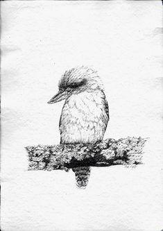 Peter Tugwell. Laughing Kookaburra.  #artcollective #sydneycreative #sydneylocal #kinfolklife #aussiehandmadeloves #etsy #inkdrawing #sydneyartists #artsy #recycledpaper #artmarkets #original #kuttlefish #upcycle #birdsofinstagram #australiannatives #birds #kookaburra  #sketch #sketching #draw #drawing #pencil  #galleryart #arte #illustration #artwork #artist #art #fineart #traditionalart #creative #creativity #progress Led Pencils, Pencil And Paper, Cockatoo, Artist Art, Traditional Art, Sketching, Laughing, Upcycle, Art Gallery