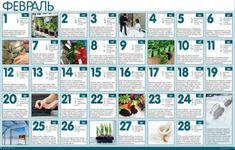 Работы в саду и огороде в феврале | Дачный _ круг