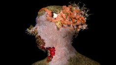As time passes, artist Jason deCaires Taylor's art work develops biological growth, redefining the underwater landscape.