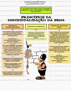 PrincíPios Da IndividualizaçãO Da Pena