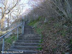 More than 100 stairs up to Hanafjell, Sandnes, Norway - photo by Jane Monica Tvedt