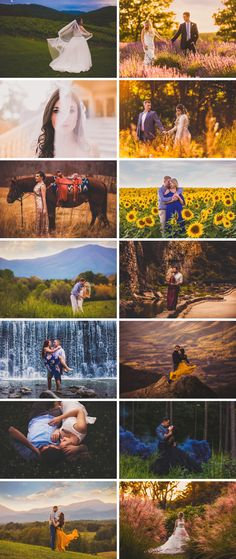 Bold, Colorful Wedding Photography | Virginia Wedding Photographer