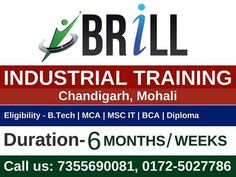 #Brillcareer is the leading company in #industrial_training. We give the best and skilled six-month industrial training in Chandigarh. We provide #industrial_training in JAVA, PHP, MYSQL, WEB DESIGNING, ANDROID etc.
