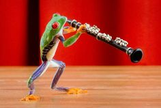 Clarinet Frog clarinet Music Musical Instrument Humor by FrogFun Flute Instrument, 8x10 Picture Frames, Frog Pictures, Clarinet, Vintage Music, Just Dance, Music Lovers, Large Prints, Musicals