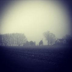 By silverlane5468: 12:45pm FOG and FROST make an awesome and eery combination on the homefront! #farm #farmlife #farmhouse #equine (see him?) #landscape #farmground#horizon #picturesque#foggyday#dreeryweather #blackandwhite #givemelight#lettherebelight #landscape #contratahotel