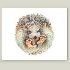 This 8x10 matte print featuring Ball hedgehog by Patrizia Ambrosini is printed on high quality 100lb matte stock paper and trimmed to artwork. @boomboomprints