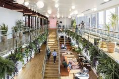 How WeWork became the most hyped startup in the world | WIRED UK