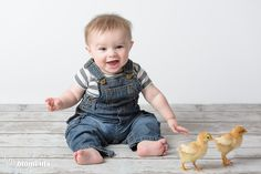 Babies and chicks... an adorable pair!  #babyportrait #chickens #chicks #babies