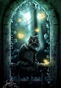 Black cat at night - art I Love Cats, Crazy Cats, Cool Cats, Animal Gato, Magic Cat, Image Chat, Witch Cat, Warrior Cats, Cat Drawing