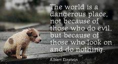 この世界は危険な場所だ。 邪悪なことをする人々がいるからじゃない。 見ているのに何もしない人々がいるからだ。 by アルバート・アインシュタイン