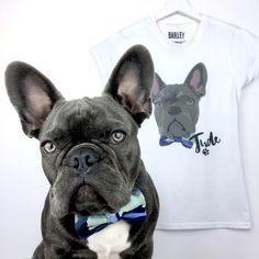 Guys custom pet tshirt with french bulldog