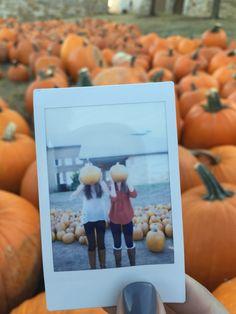 fall Polaroid!