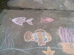 beach underwater chalkboard art - Yahoo Image Search Results