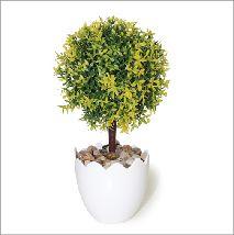 Arbolito de hoja lanceolada verde limón. Todos nuestros modelos aquí https://www.aw-regalos.com/ares