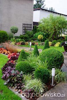 Small Garden Landscape, Lawn And Landscape, Garden Deco, Garden Yard Ideas, Front House Landscaping, Backyard Landscaping, Landscaping Design, Indoor Water Garden, Evergreen Garden