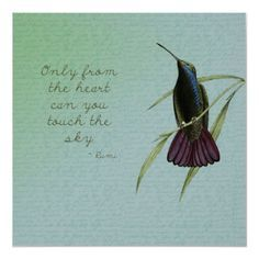 hummingbird love quotes - Google Search
