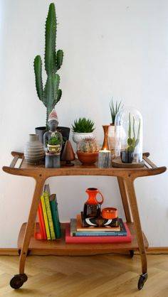 cactus drink cart with terranium