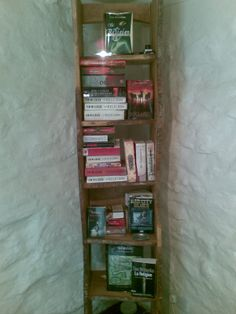 "Tim Willocks' bookshelves: ""If an author stacks enough of his own books on a shelf, will it fool him into thinking he can write another?"""