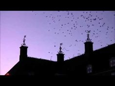DELILAH - Tom Jones - cover ELIAS TRIANTAFYLLOY