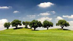 Alojamiento y #Golf - Barceló Montecastillo (Jerez de la Frontera, #Cádiz)