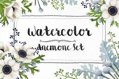 Watercolor Anemone Set by Kotulska on Creative Market