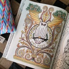 Harry Potter Coloring Book Adult Colouring Books Hogwarts Owls Vintage Pages