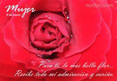 Para ti mujer, la más bella flor. Recibe toda mi admiración y cariño. #DíaDeLaMujer
