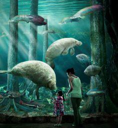 River Safari-a popular & famous attraction in Singapore  #sgmemory #archivingsg