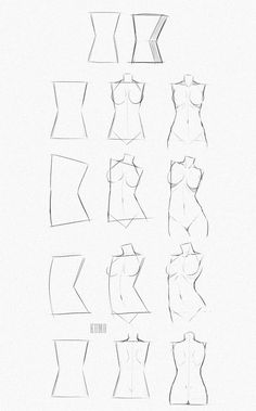 #female #torso #tutorial #shapes