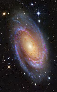 M81 - HST and Subaru Contains: M 81, Bode's nebulae, NGC 3031 Credit: Roberto Colombari