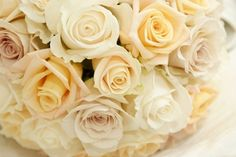 These beautiful roses are perfect for a white or ivory traditional wedding theme