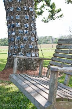 Cute photo display for outdoor birthday/anniversary/graduation.