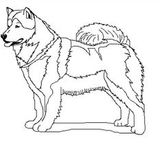 Sled Dogs Samoyed Coloring Pages For Kids Cny 2018 Husky Wood Carvings School Ideas Woodwork Alaska Animals Woodworking Paneling Colouring